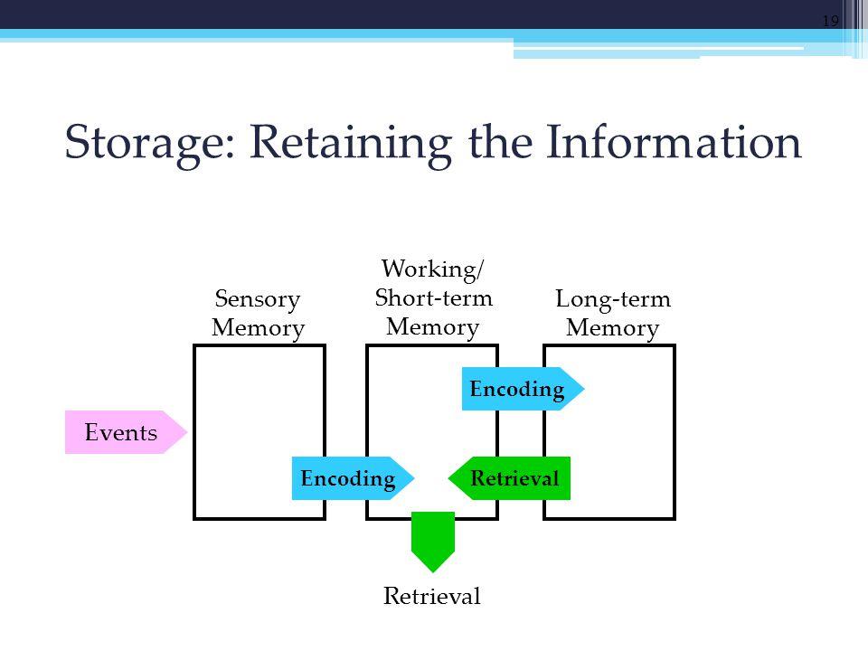Storage: Retaining the Information