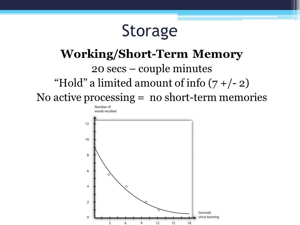 Working/Short-Term Memory