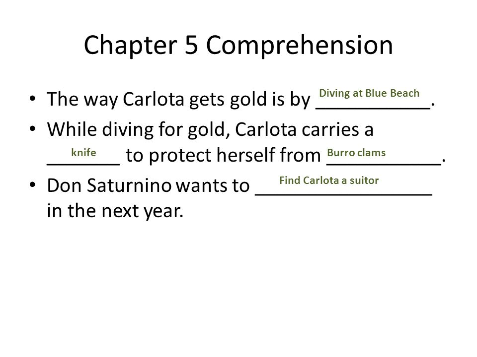Chapter 5 Comprehension