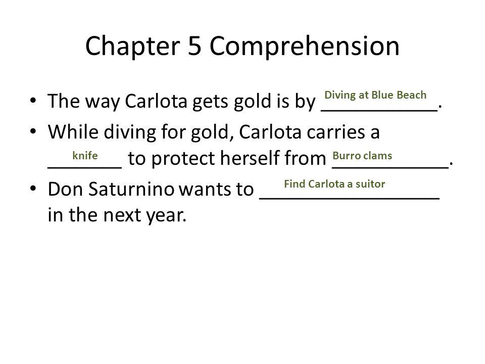 Chapter 5 Comprehension
