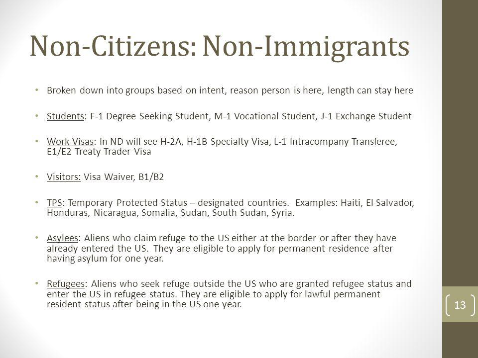 Non-Citizens: Non-Immigrants