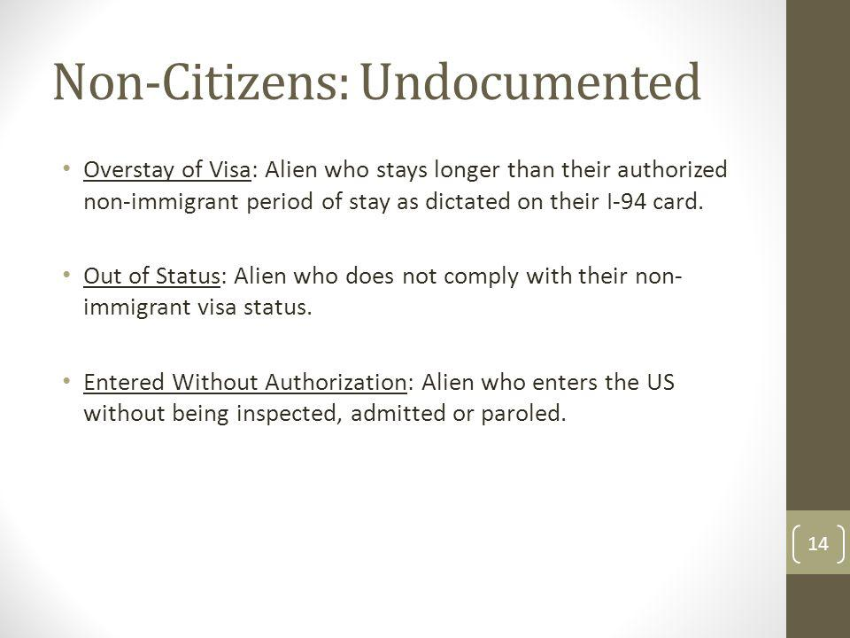 Non-Citizens: Undocumented
