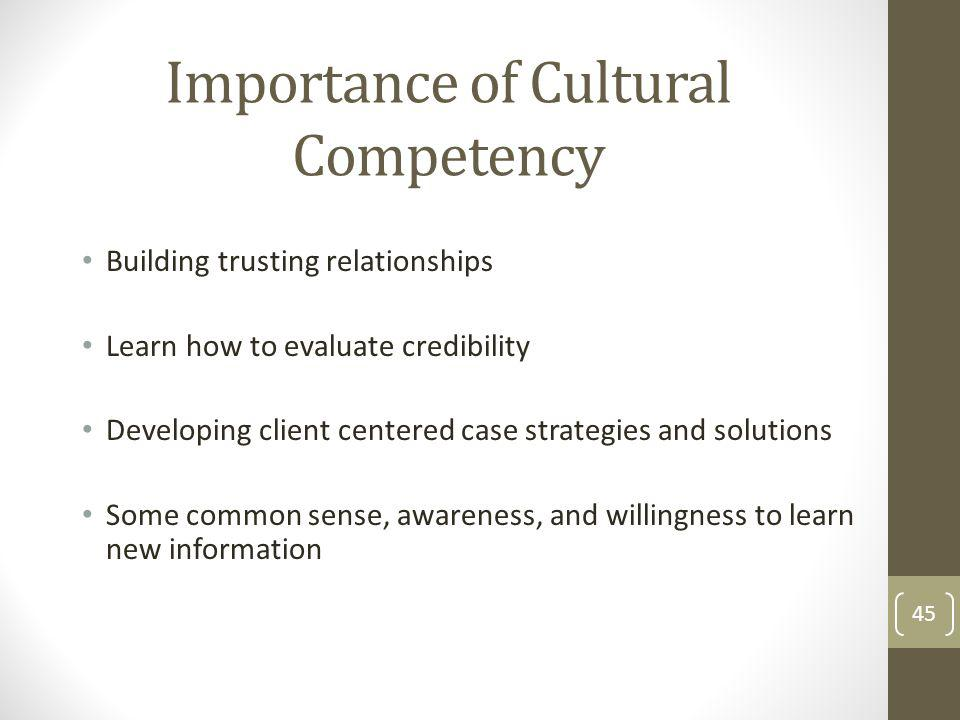 Importance of Cultural Competency