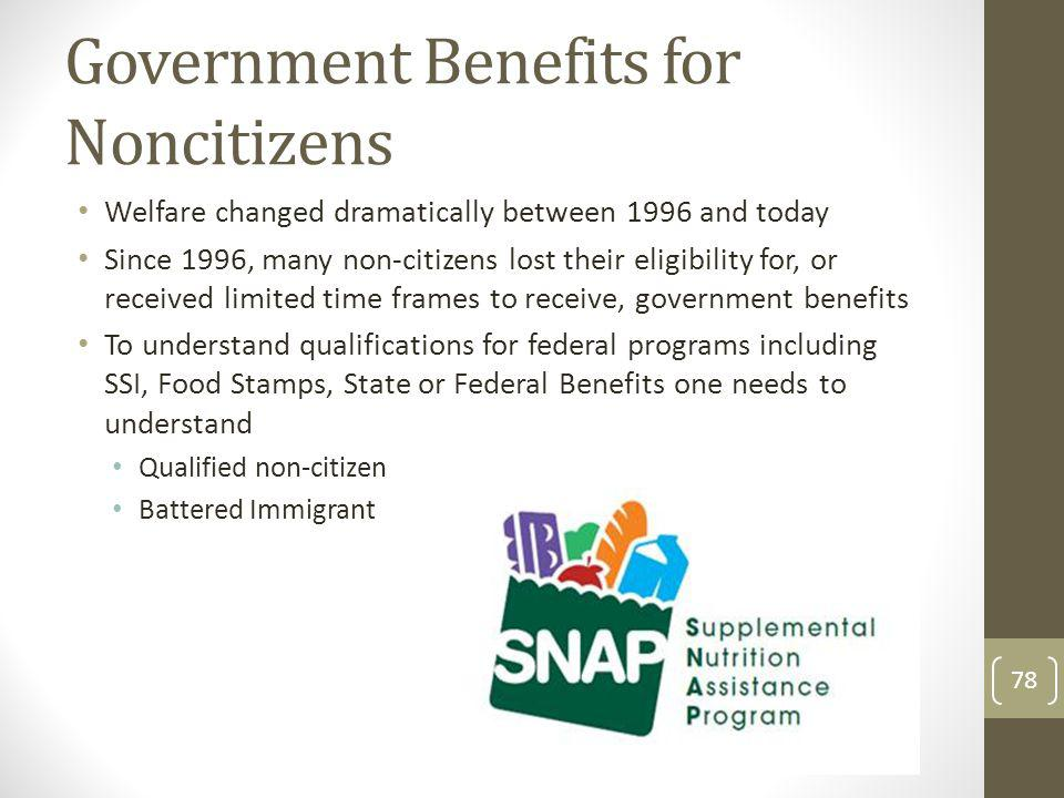 Government Benefits for Noncitizens