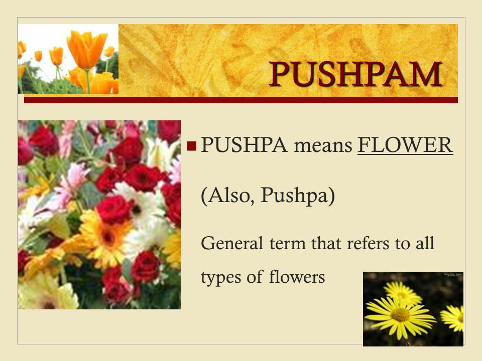 PUSHPAM PUSHPA means FLOWER (Also, Pushpa)