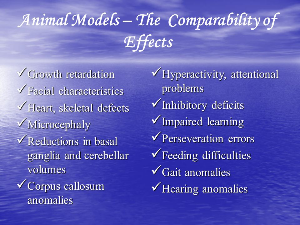 Animal Models – The Comparability of Effects