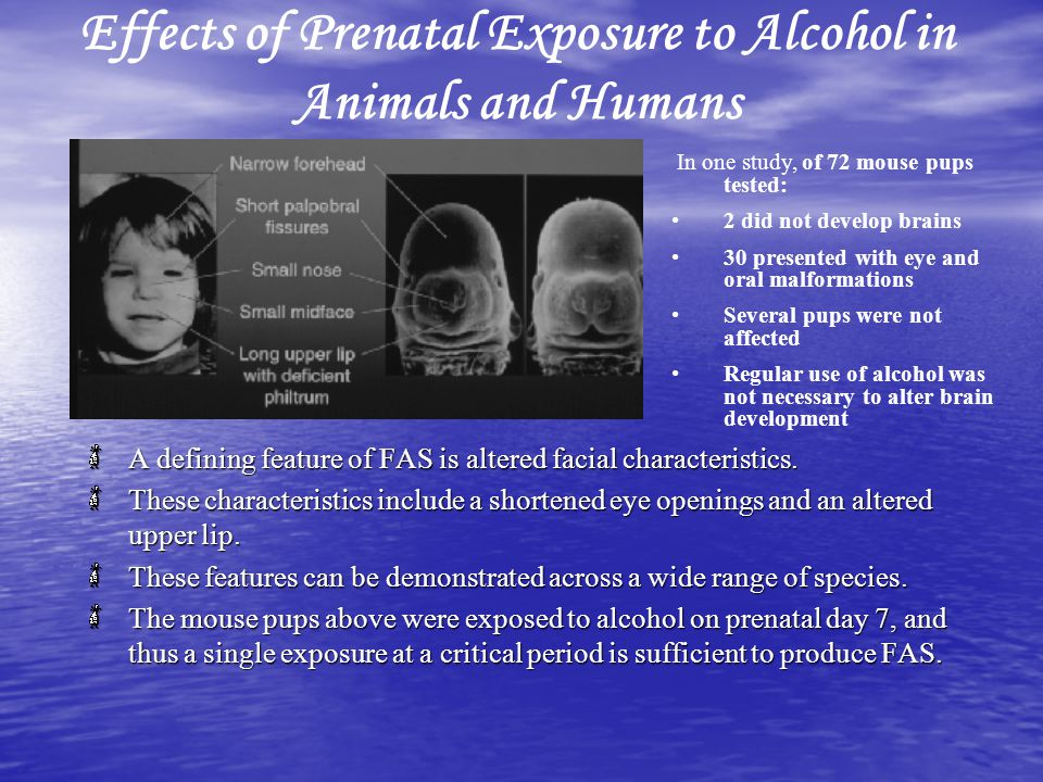 Effects of Prenatal Exposure to Alcohol in Animals and Humans