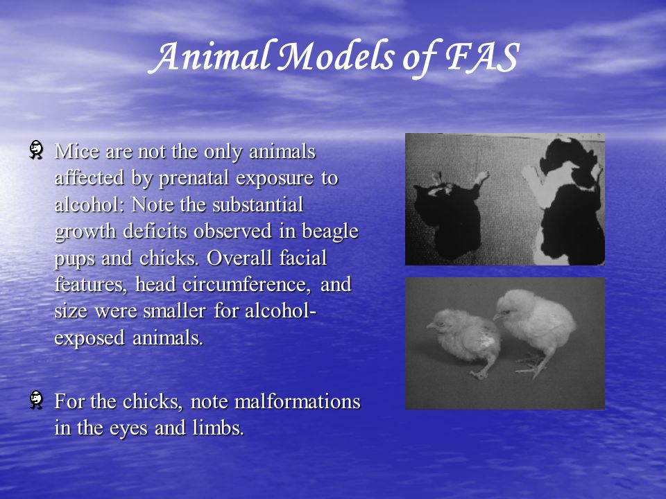 Animal Models of FAS