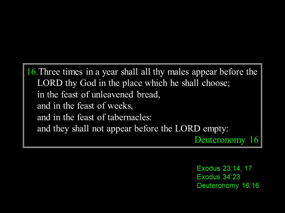 in the feast of unleavened bread, and in the feast of weeks,