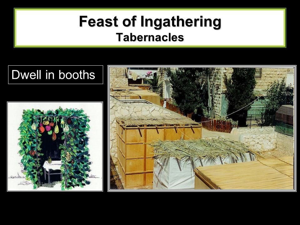 Feast of Ingathering Tabernacles