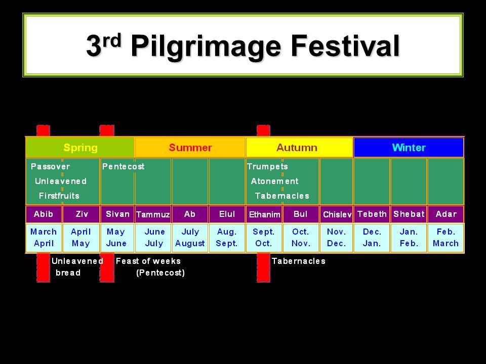3rd Pilgrimage Festival