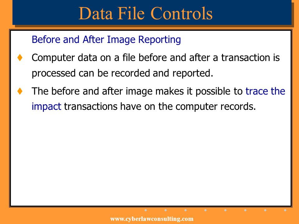 Data File Controls Before and After Image Reporting