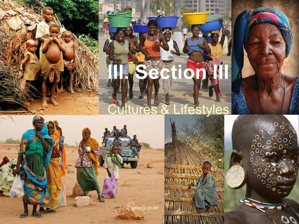 III. Section III Cultures & Lifestyles Ch 21 PP
