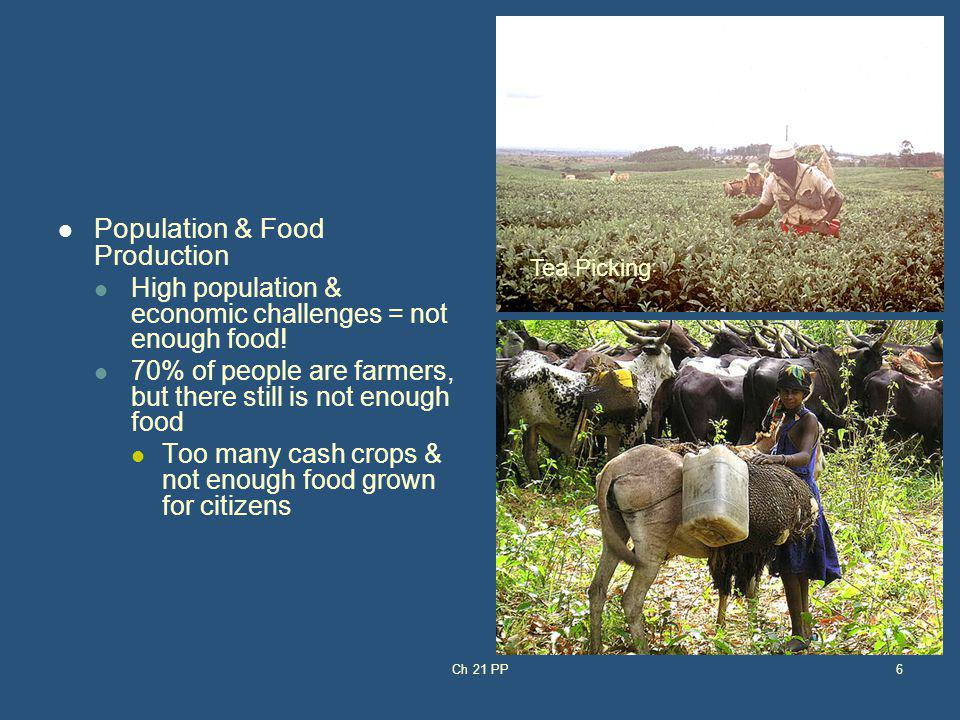 Population & Food Production