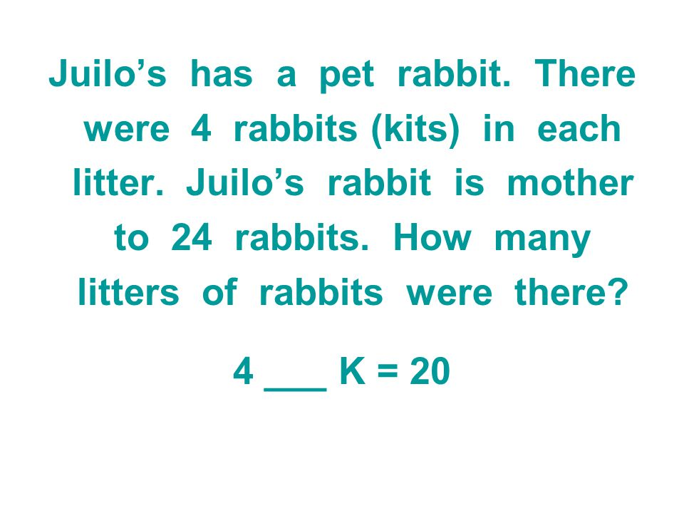 Juilo's has a pet rabbit. There were 4 rabbits (kits) in each
