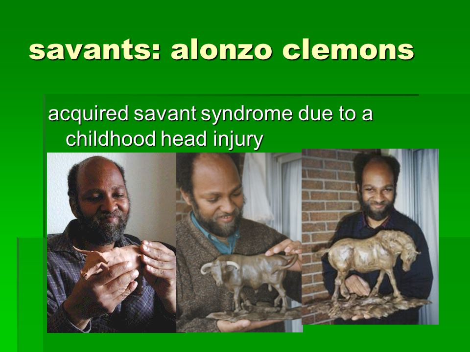 savants: alonzo clemons