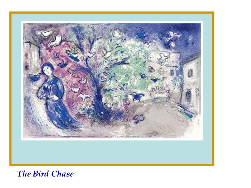 The Bird Chase
