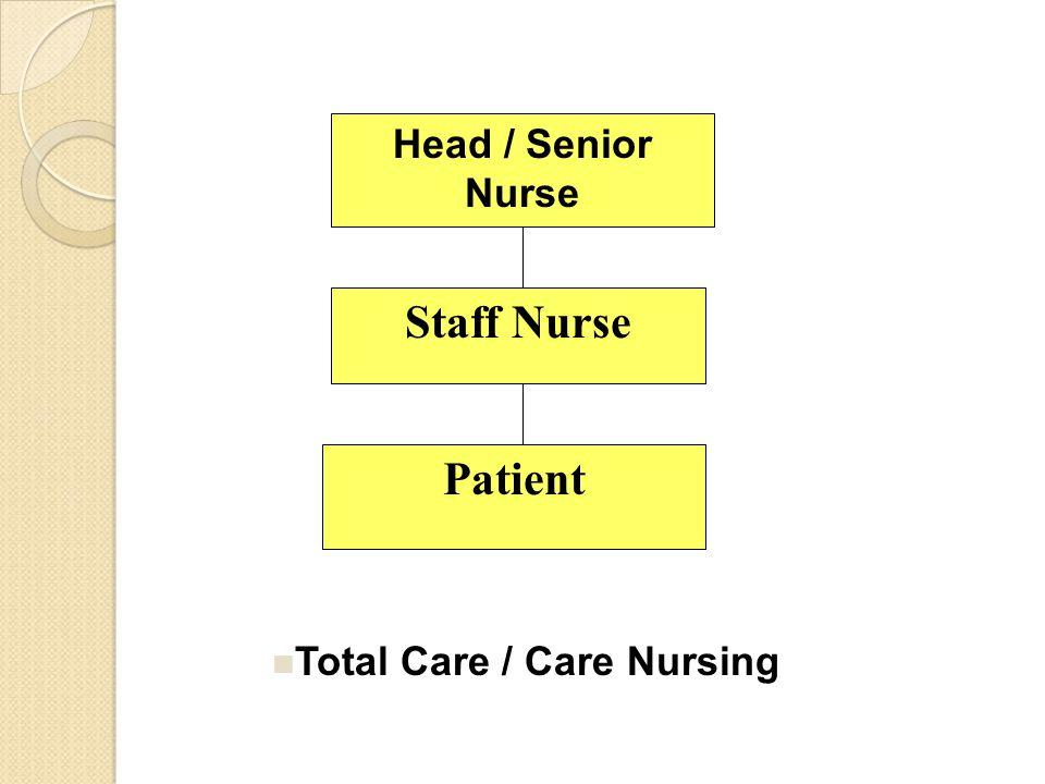 Head / Senior Nurse Staff Nurse Patient Total Care / Care Nursing