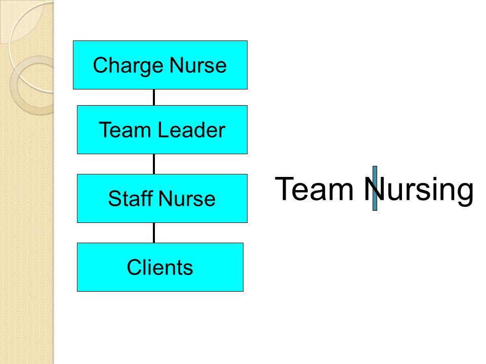 Charge Nurse Team Leader Team Nursing Staff Nurse Clients