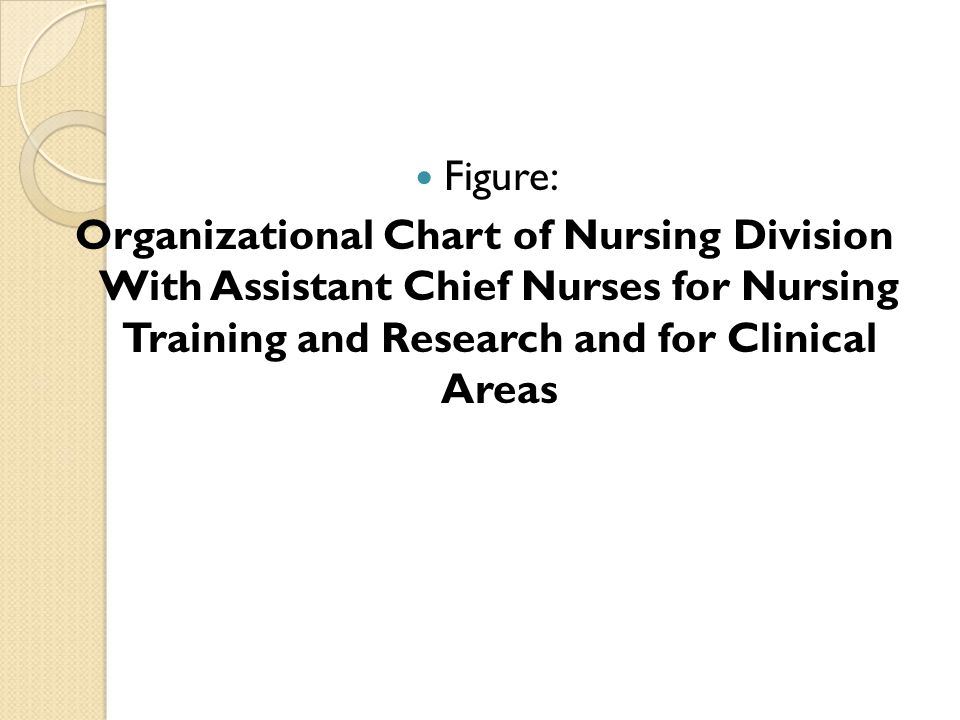Figure: Organizational Chart of Nursing Division With Assistant Chief Nurses for Nursing Training and Research and for Clinical Areas.