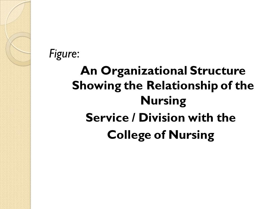 Figure: An Organizational Structure Showing the Relationship of the Nursing Service / Division with the College of Nursing