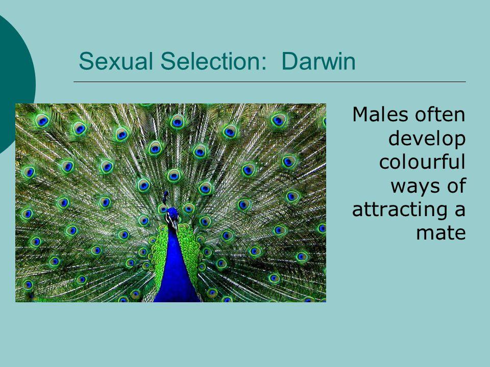 Sexual Selection: Darwin