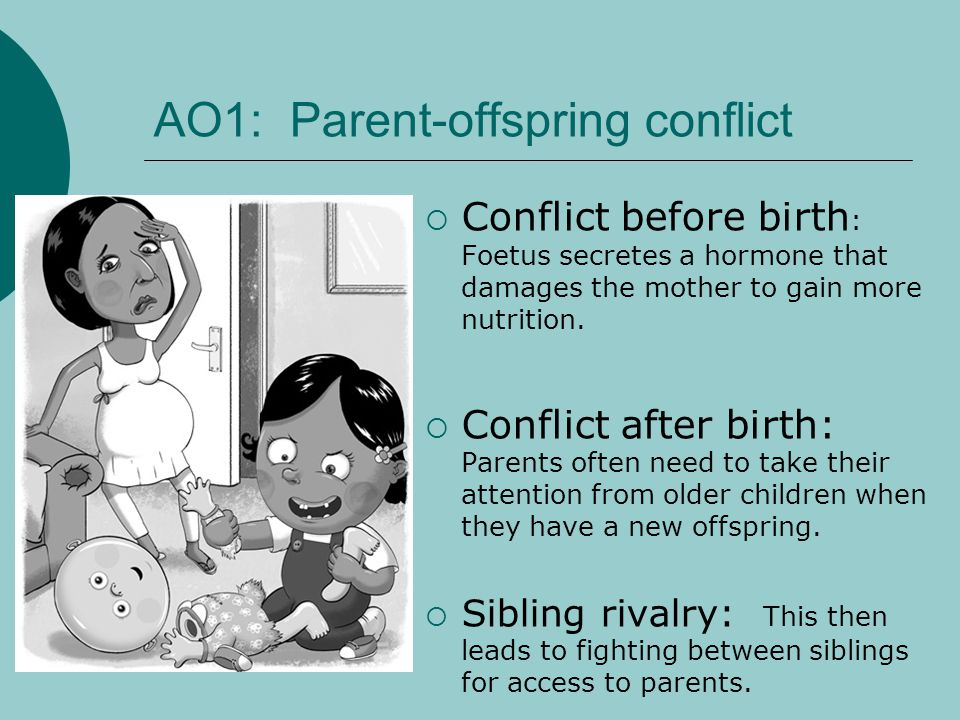 AO1: Parent-offspring conflict