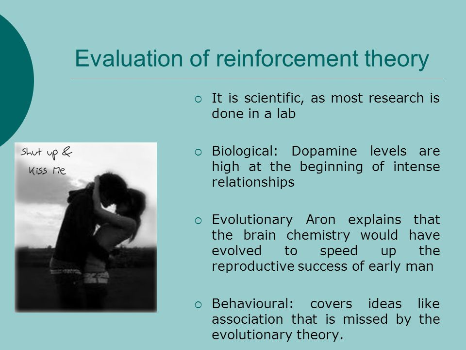 Evaluation of reinforcement theory