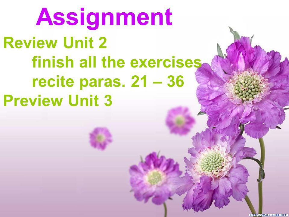 Assignment Review Unit 2 finish all the exercises