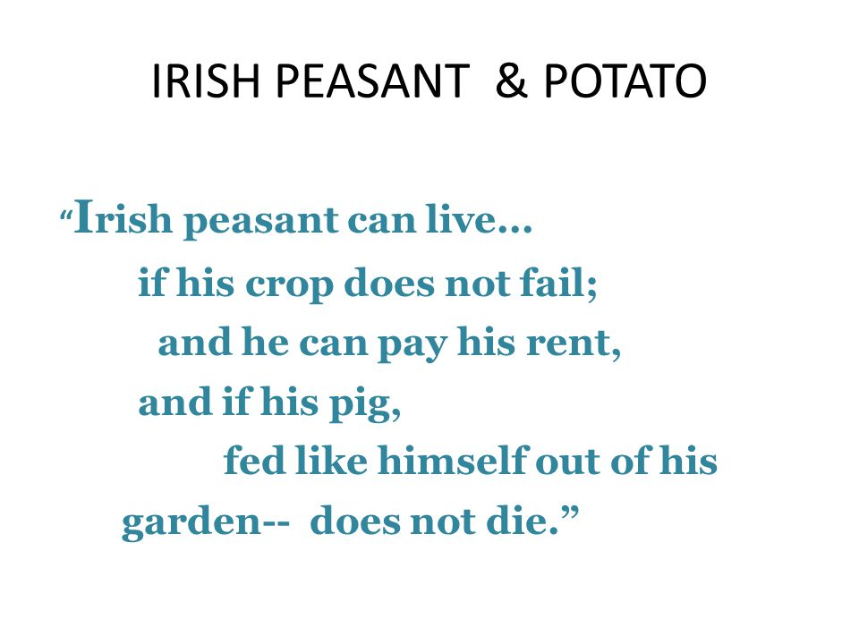 IRISH PEASANT & POTATO if his crop does not fail;