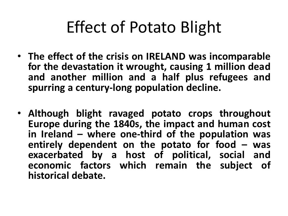 the irish potato crisis It was a continuation of the punitive mentality toward the irish left ireland entirely dependent upon itself for relief and perhaps most importantly, a financially ruined ireland would be.