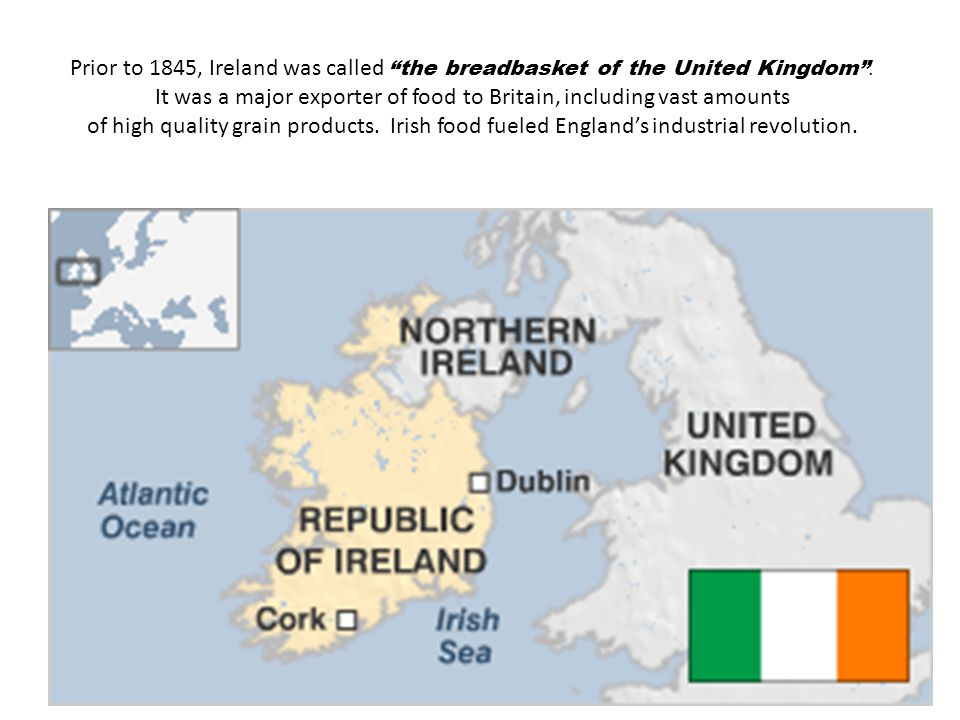 Prior to 1845, Ireland was called the breadbasket of the United Kingdom . It was a major exporter of food to Britain, including vast amounts