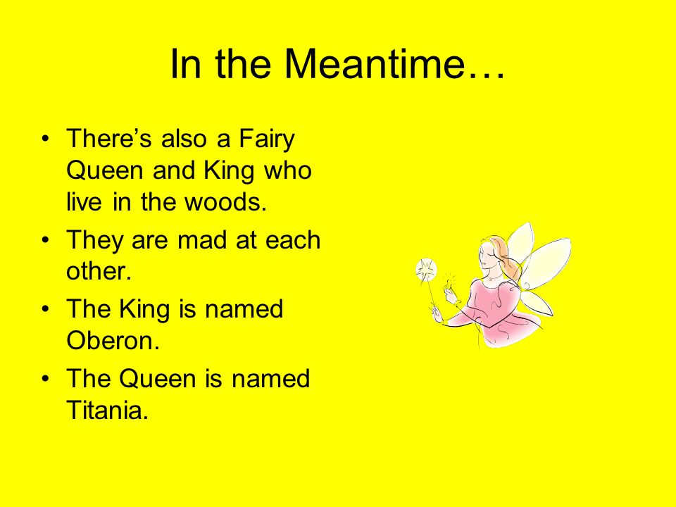 In the Meantime… There's also a Fairy Queen and King who live in the woods. They are mad at each other.
