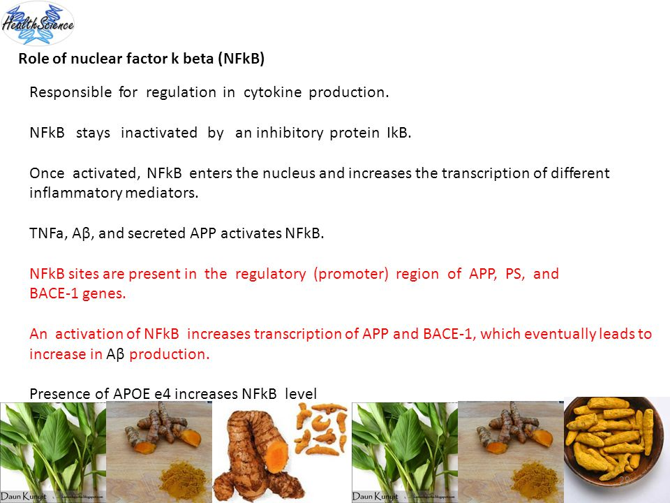 Role of nuclear factor k beta (NFkB)