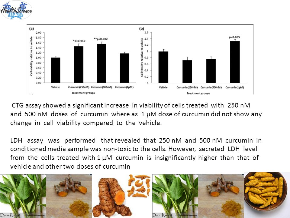 CTG assay showed a significant increase in viability of cells treated with 250 nM and 500 nM doses of curcumin where as 1 μM dose of curcumin did not show any change in cell viability compared to the vehicle.