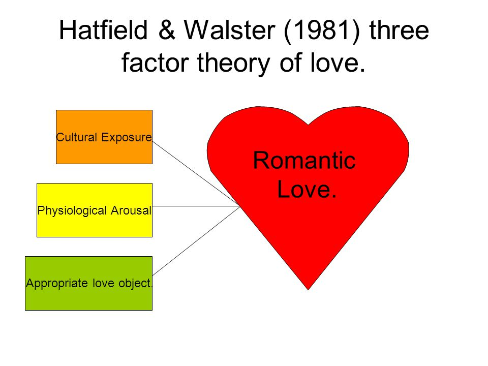 Hatfield & Walster (1981) three factor theory of love.