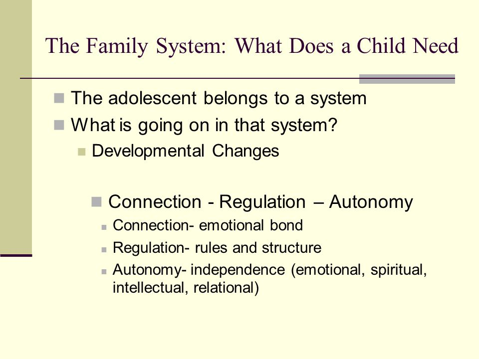 The Family System: What Does a Child Need