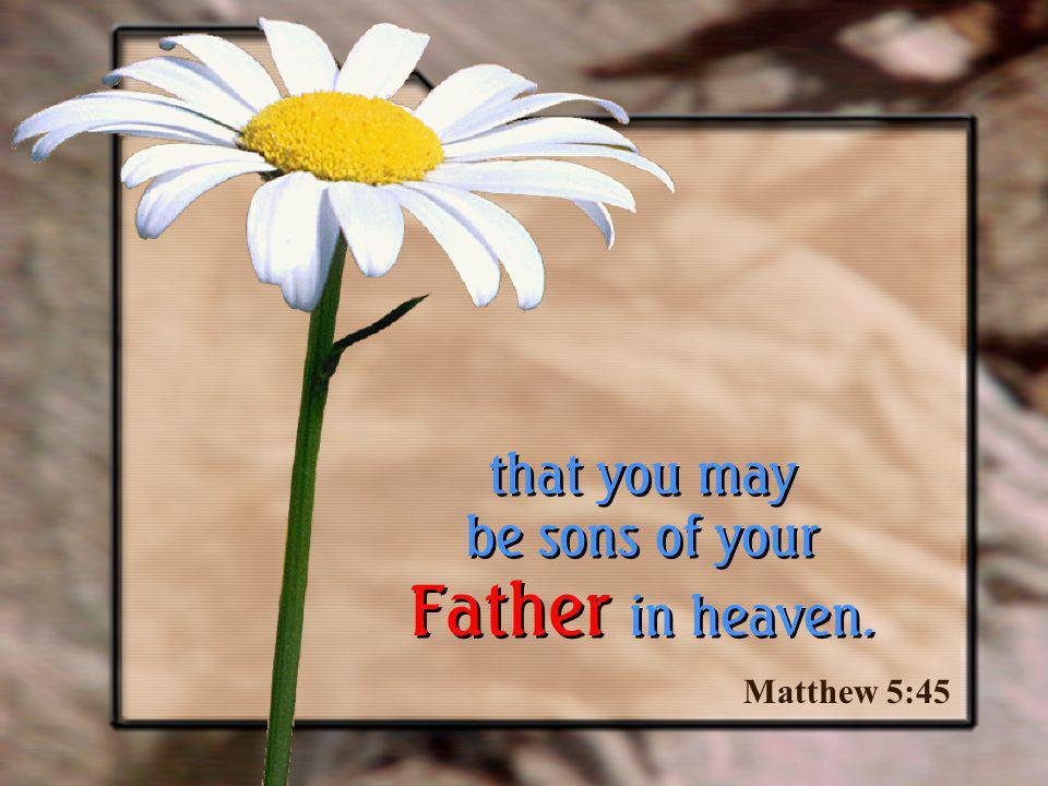 that you may be sons of your Father in heaven.