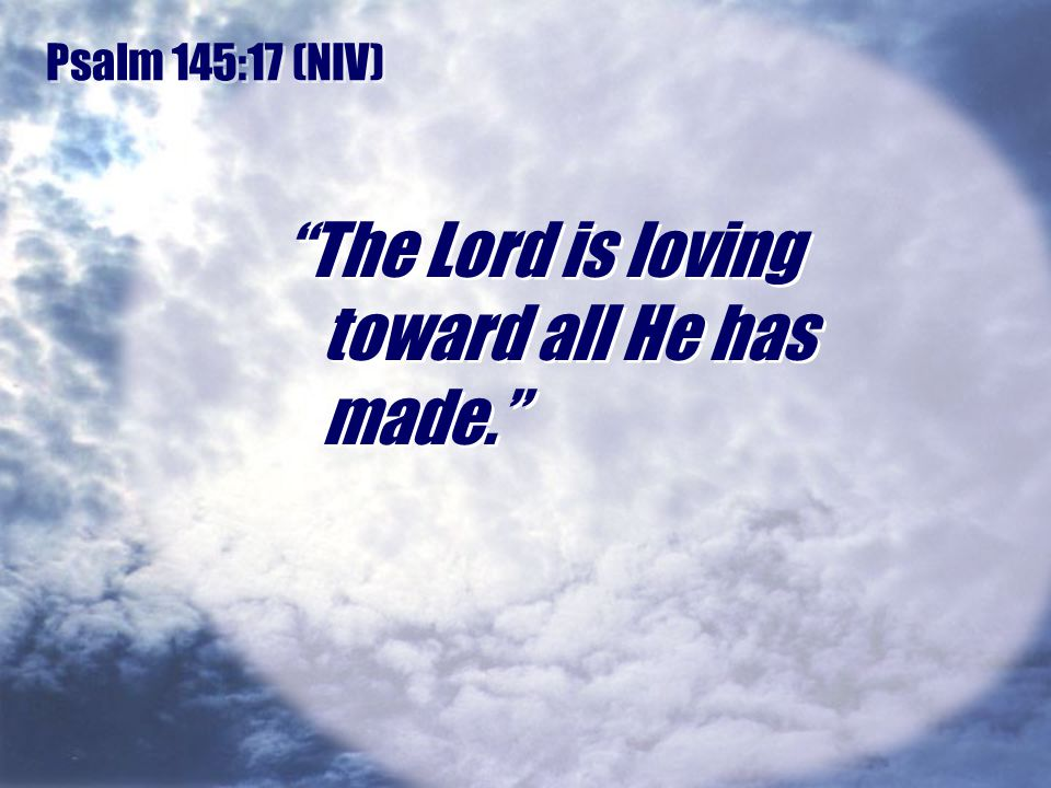 The Lord is loving toward all He has made.