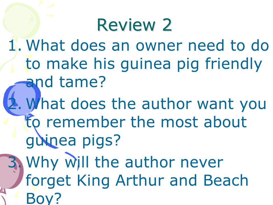 Review 2 What does an owner need to do to make his guinea pig friendly and tame