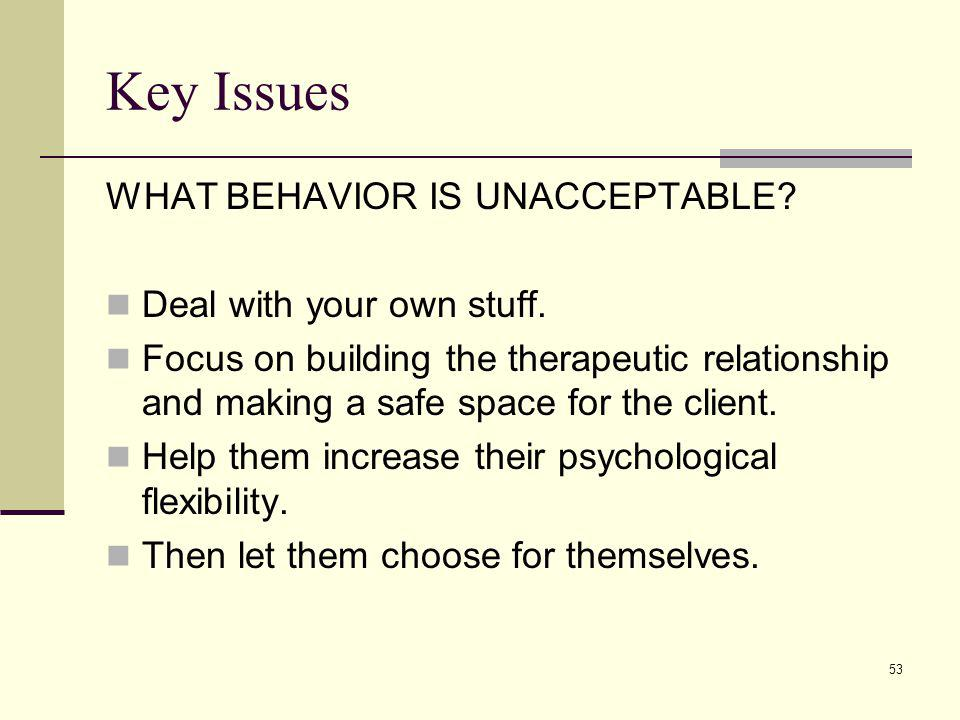 Key Issues WHAT BEHAVIOR IS UNACCEPTABLE Deal with your own stuff.