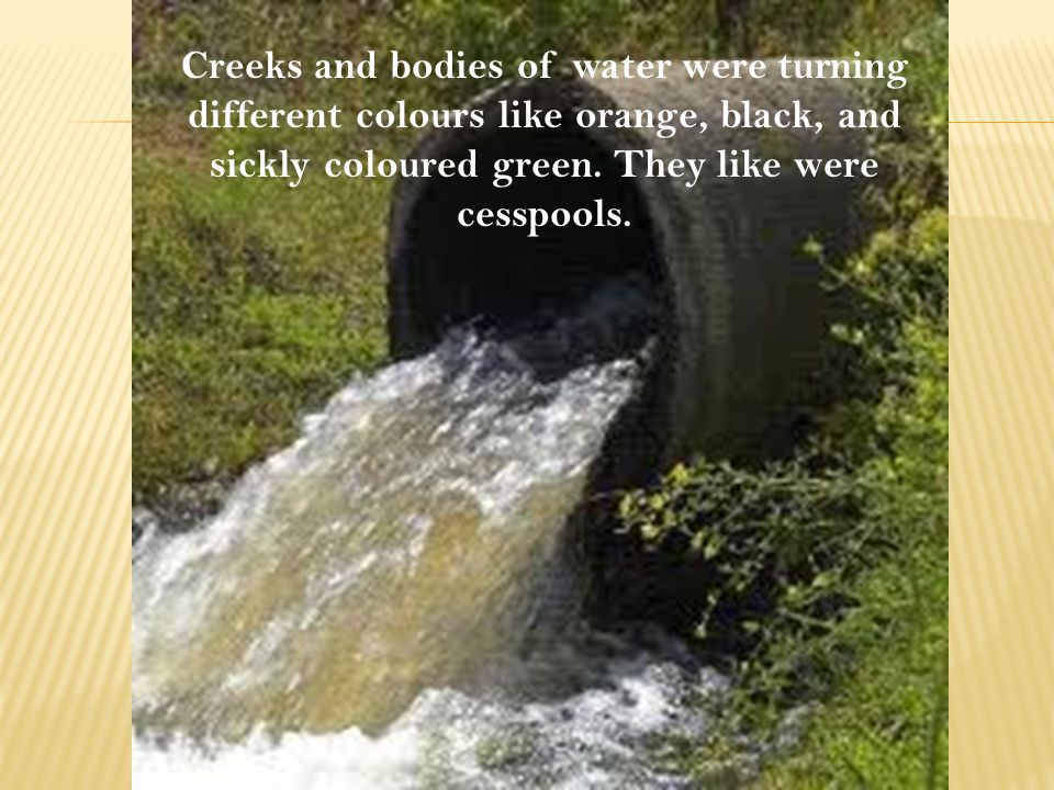 Creeks and bodies of water were turning different colours like orange, black, and sickly coloured green.