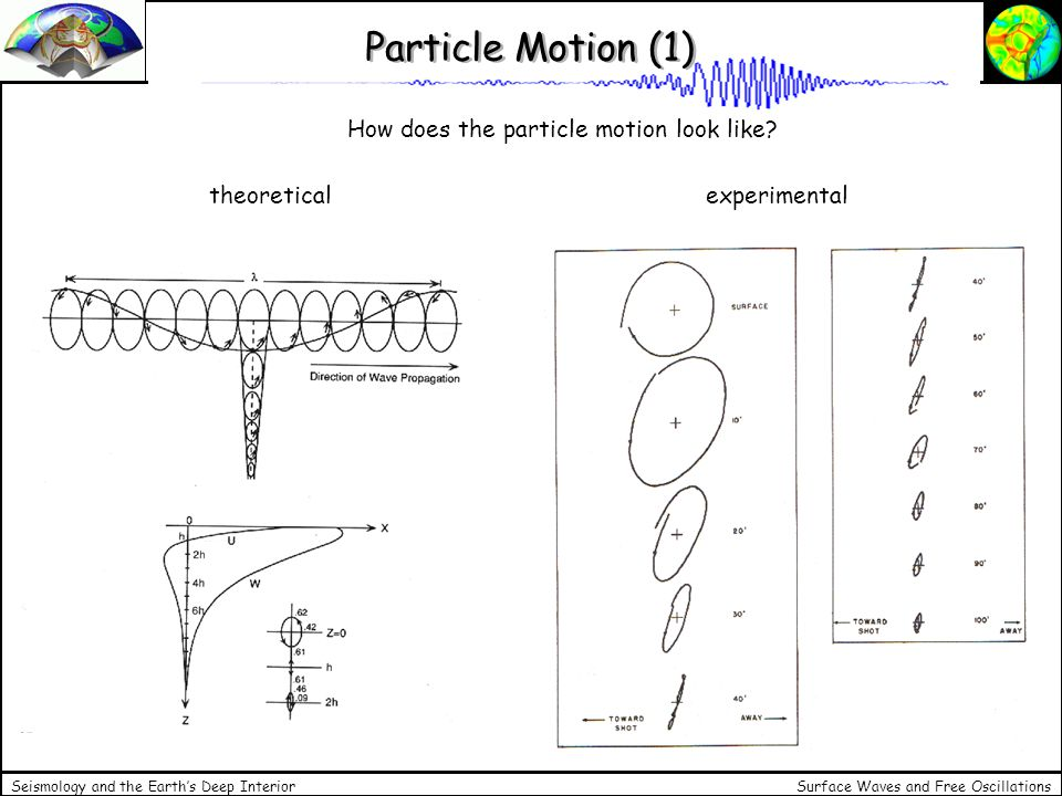 Particle Motion (1) How does the particle motion look like