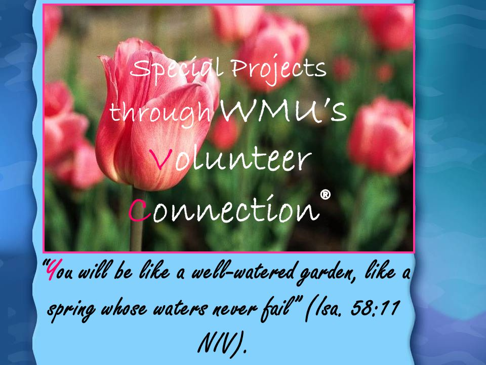 Special Projects through WMU's Volunteer Connection®