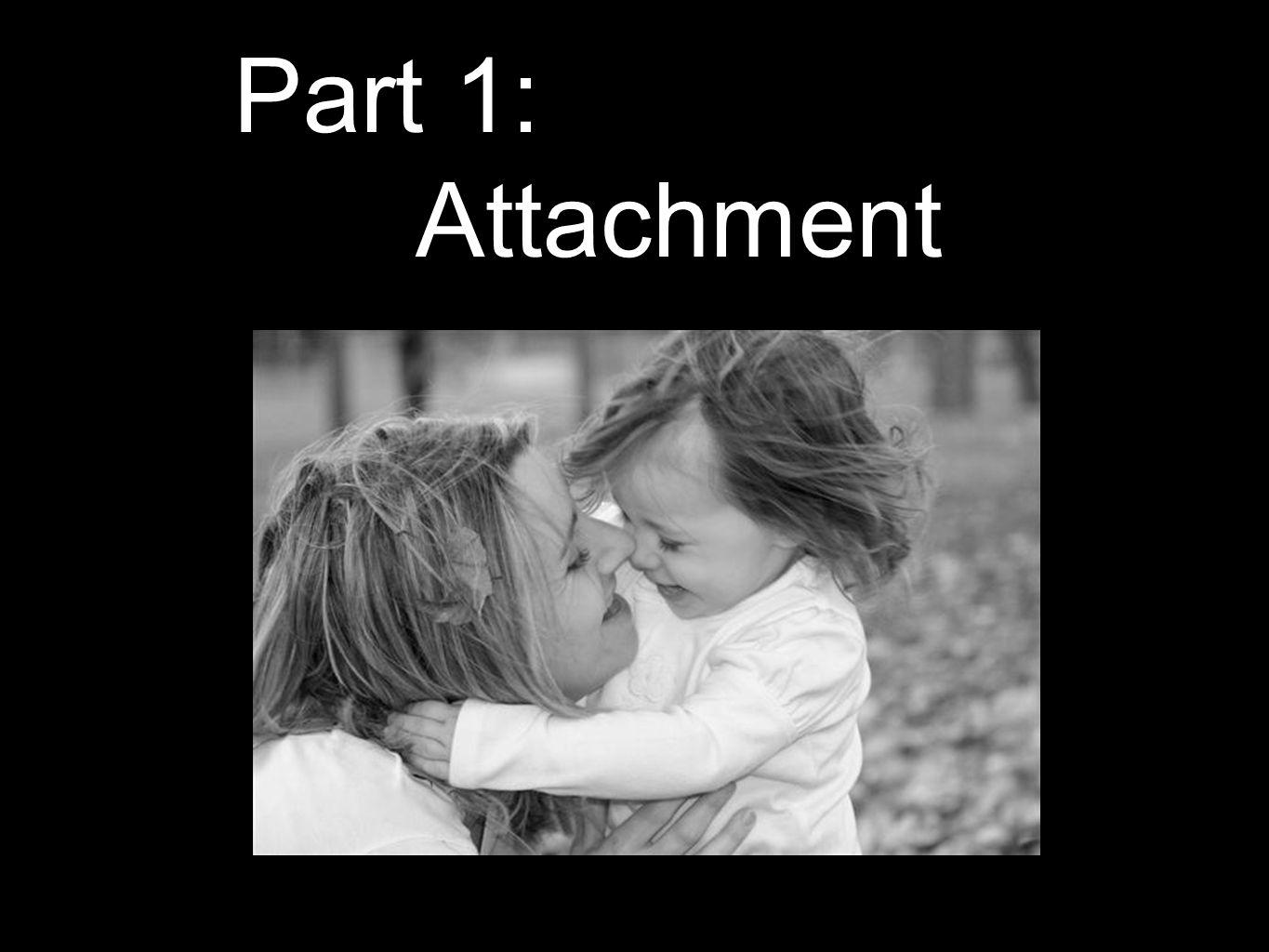 Part 1: Attachment