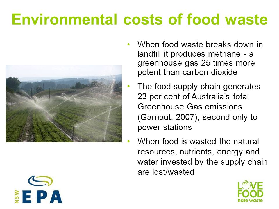 Environmental costs of food waste