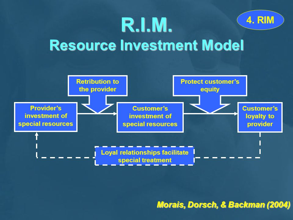 R.I.M. Resource Investment Model