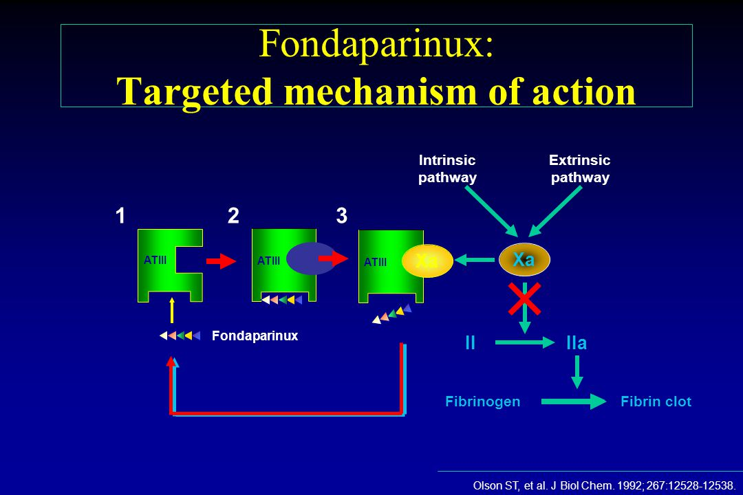 Fondaparinux: Targeted mechanism of action