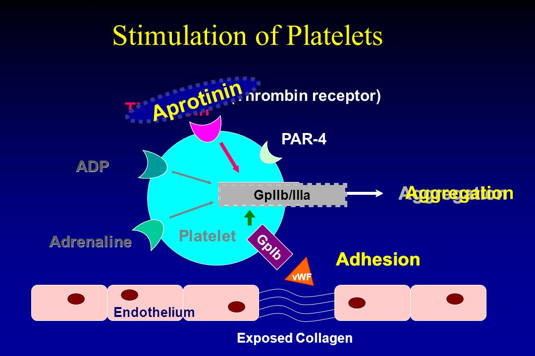 Stimulation of Platelets