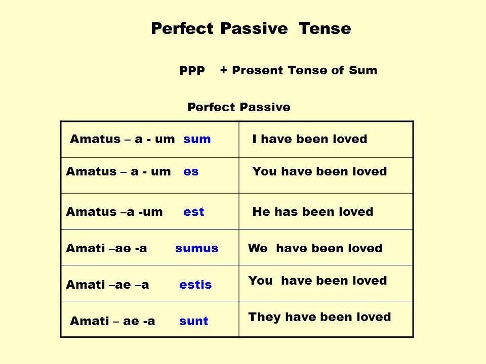 Perfect Passive Tense PPP + Present Tense of Sum Perfect Passive